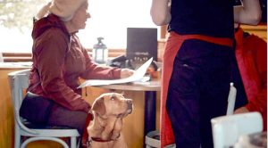 Pets alleviate depression, loneliness, and social isolation in seniors while encouraging more physical activity