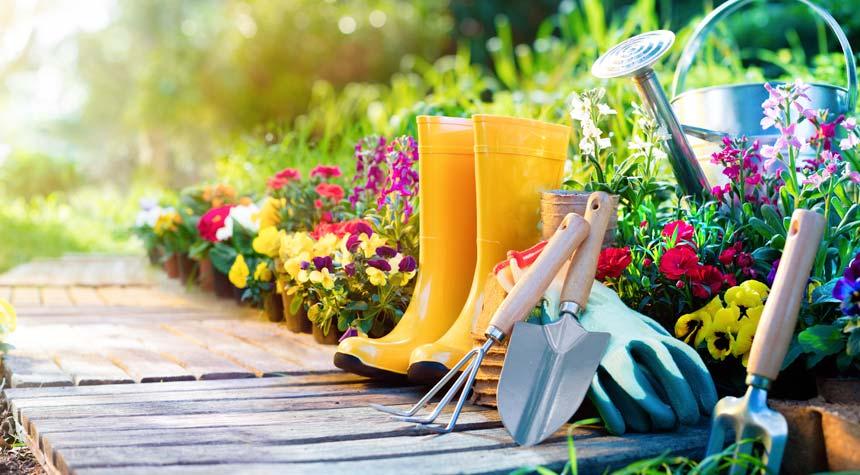 Gardening: Get Started Now