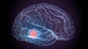 Predicting Parkinson's Risk