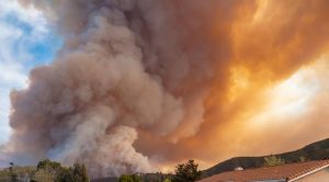 Smoke From Wildfires More Toxic Than We Thought